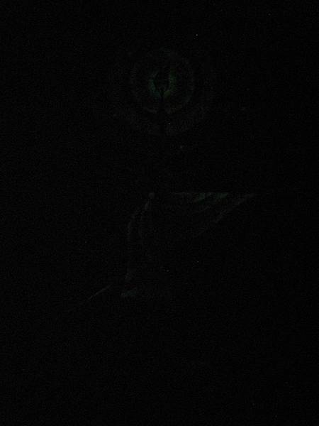 巨蟹座 8