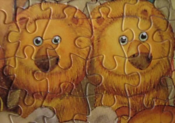 酷酷熊玩具舖 獅子.JPG