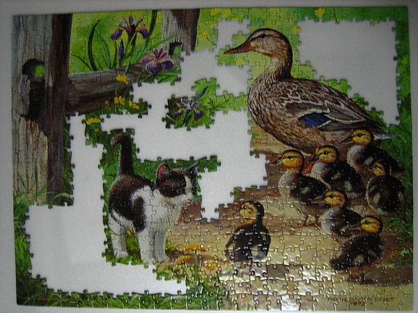 Duck Inspector 8