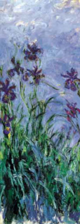 Iris Mauves, Monet 1914-1917.jpg