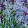 Iris Mauves, Monet 1914-1917