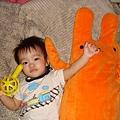 MOMO跟兔子大嬸