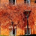 嗨~今天是二十四節氣裡的『秋分』喔!!秋分也稱秋半,因為這一日正是秋日九十天的一半,過了這一天,也就是過了今天,白天會越來越短,夜晚會慢慢加長,秋分代表夏天的真正結束以及秋天的正式開始,也慢慢出現秋天的氛圍,http://www.mdnkids.com/24seasons/fall1.htm 各位粉絲們,出門多少帶一件微薄衣物,不要讓自己不小心著涼囉~