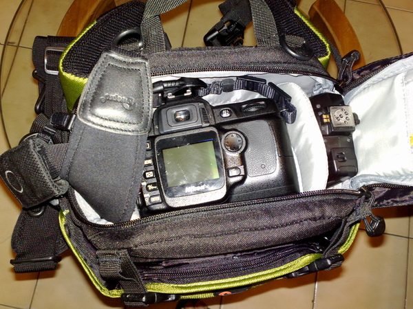 20081129262.jpg