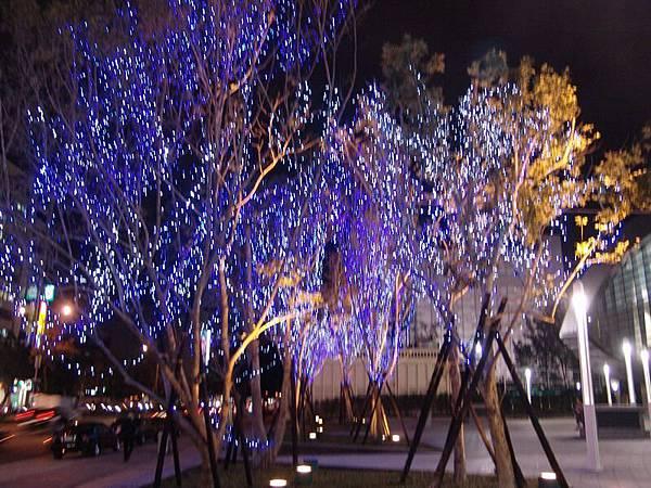 小巨蛋外的樹都有掛燈