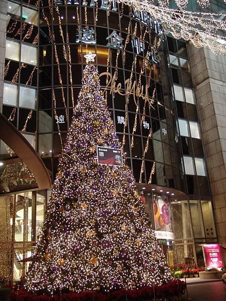 聖誕樹全景與遠企大樓