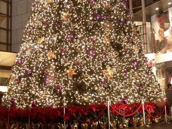 聖誕樹的底座