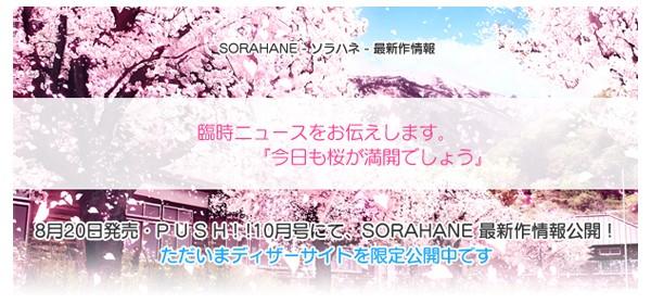 今日も桜が満開でしょう.jpg