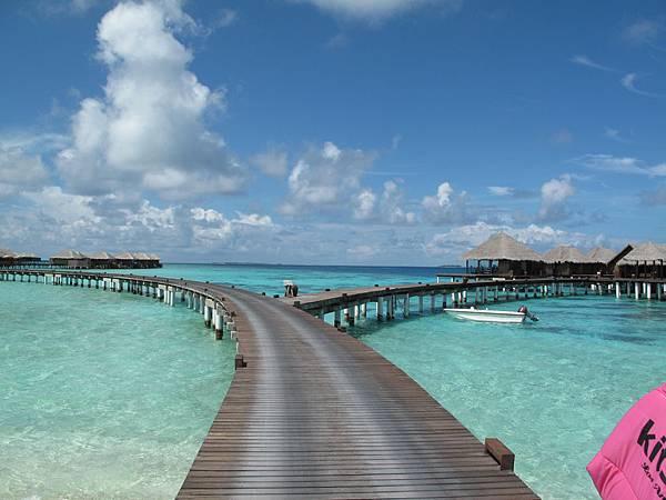 02-左手邊建築群是是最高等級的水上屋 Club Coco Palm, 右手邊就是COCO SPA.JPG