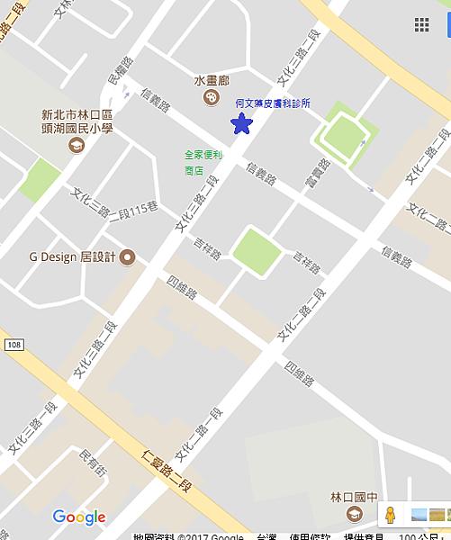 何文藻皮膚科診所地圖