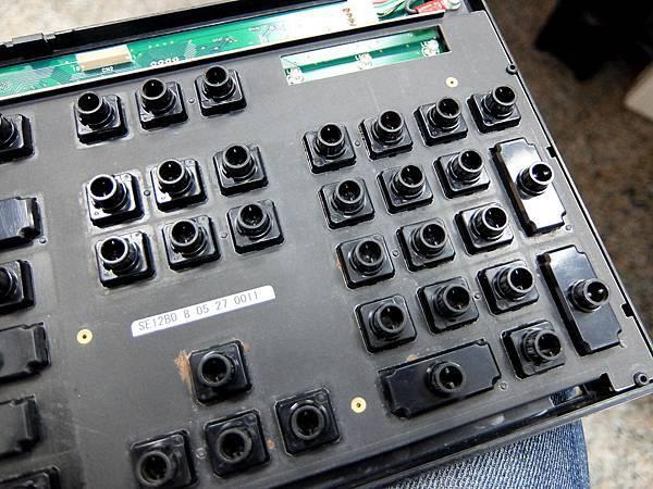 DSCF4392.JPG