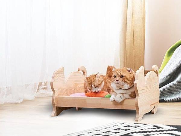 20170813_11毛小孩睡床.jpg