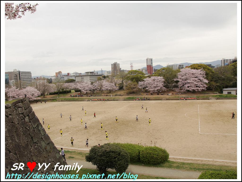 舞鶴花園-賞櫻32.jpg