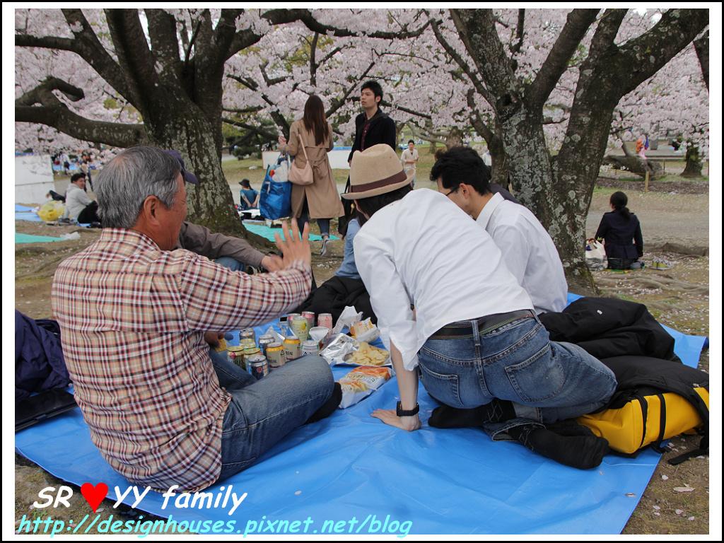 舞鶴花園-賞櫻46.jpg