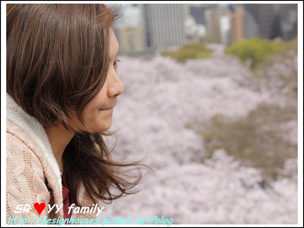 舞鶴花園-賞櫻65.jpg