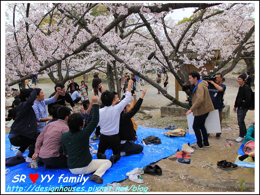 舞鶴花園-賞櫻134.jpg