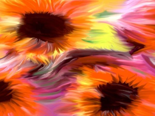 ws_Sunflowers_1024x768.jpg