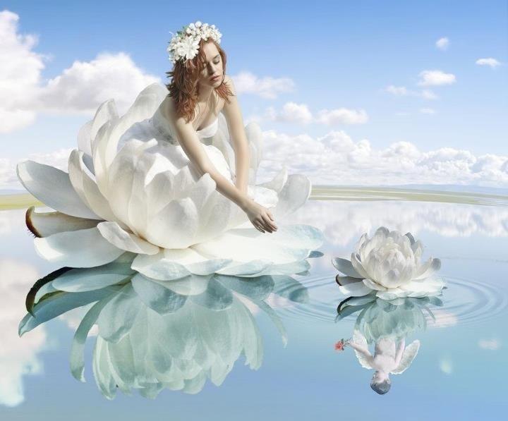 台中婚紗-頂級婚紗專家 (5)