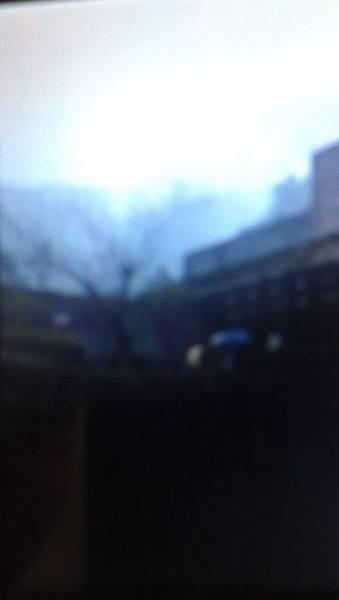 IMAG2895.jpg