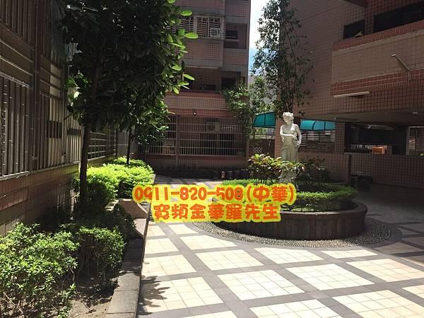 成都路14號 青青校樹 60元 店面半價_122