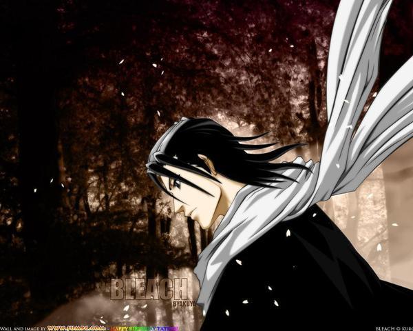 Bleach死神-朽木白哉-隊長(黑).jpg
