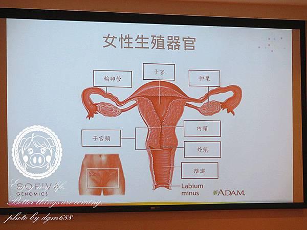 HPV自我採檢 007_副本