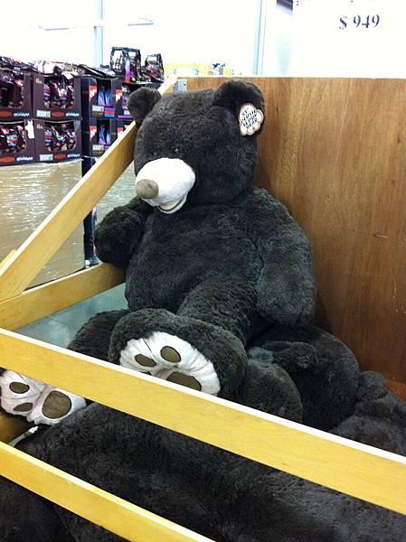 有個卡其色也想要買黑熊