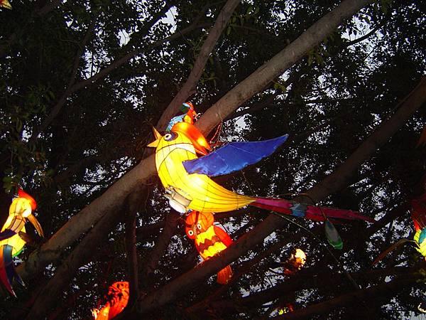樹上的花燈