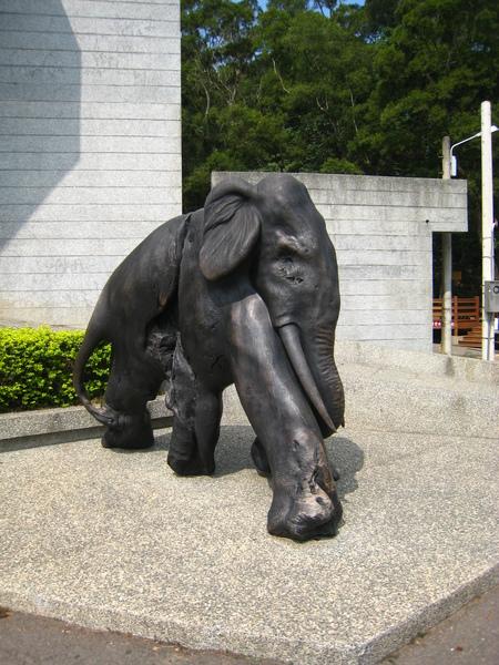 三義木雕博物館前的大象,記得N年前和大學同學來玩的時候也有跟它們拍照XD
