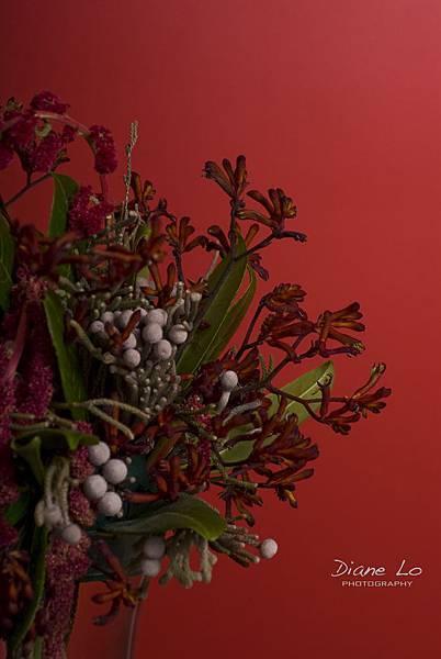 eclair & waterfull flower 1372