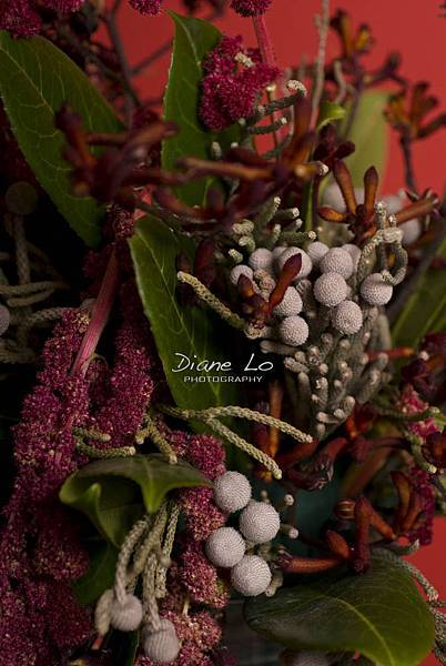 eclair & waterfull flower 1374
