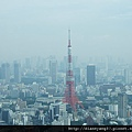雖非第一次看見東京鐵塔,但卻是首度在Ropponki Hills充滿現代感洗鍊設計的展望台遠眺它,感覺很不同….JPG