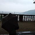 我撐傘獨坐的背景,與我眼底的雨中海德堡。.JPG