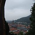 這算是從半山腰先俯窺一下海德堡~ (1).JPG