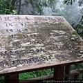 萌芽年代… 西元前五百多年!WOW~~~好老!難怪解說老師要說,神木是地球上的活化石!