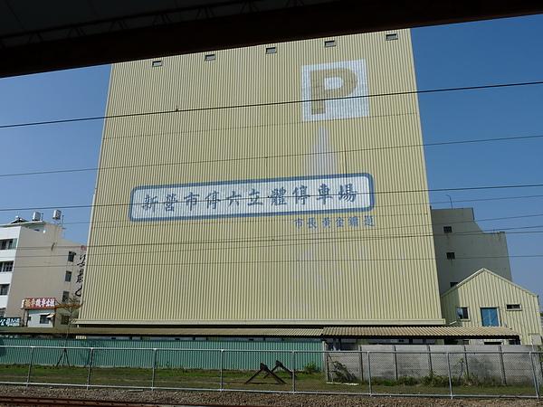 P1000246.JPG