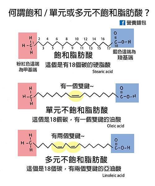 飽和,單元及多元不飽和脂肪酸.jpg