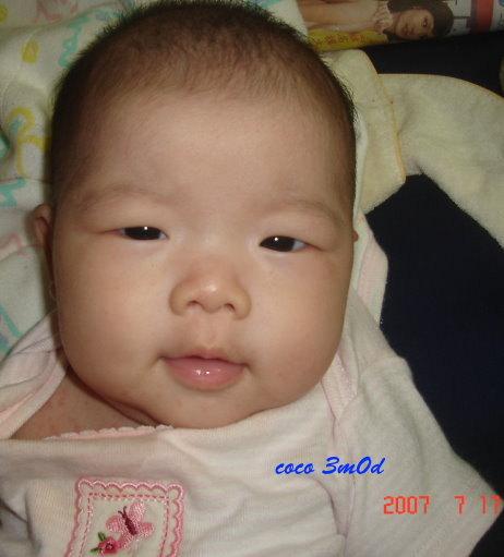 DSC07970.jpg
