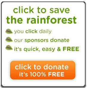 拯救雨林.jpg