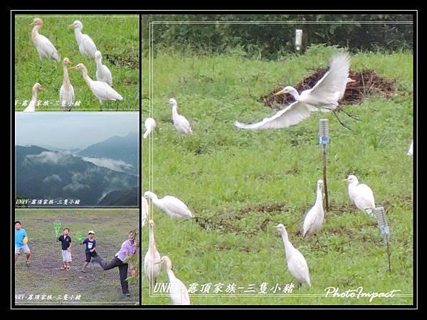 2012.09.01-2-UNRV露頂家族-新竹觀雲亭-011