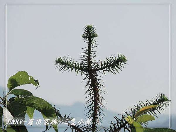 2012.09.01-2-UNRV露頂家族-新竹觀雲亭-091