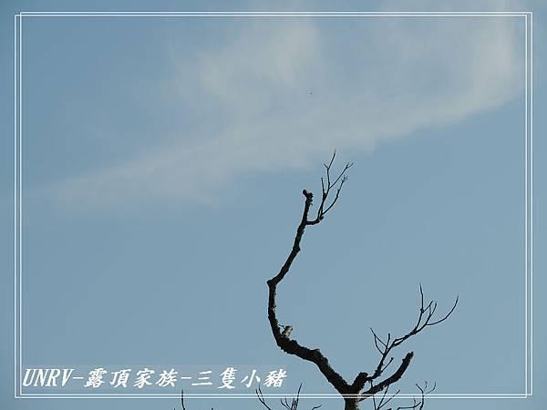 2012.09.01-2-UNRV露頂家族-新竹觀雲亭-075