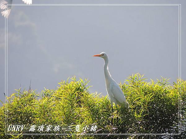 2012.09.01-2-UNRV露頂家族-新竹觀雲亭-080