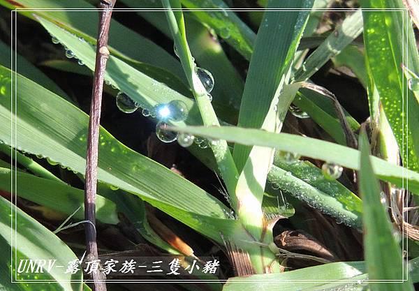 2012.09.01-2-UNRV露頂家族-新竹觀雲亭-090