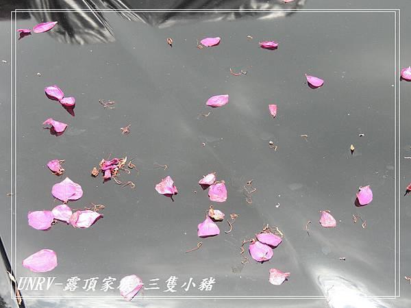 2012.09.01-2-UNRV露頂家族-新竹觀雲亭-154