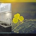 @廚房廚具流理台 不鏽鋼檯面一字型-作品新北市三重中華路張公館-(4).jpg