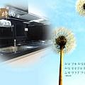 @韓國進口三星人造石檯面一字型廚房 廚具工廠直營 作品-新北市三重郭公館-五面結晶鋼烤門板+F型把手+木心板桶身+韓國進口三星人造石檯面+喜特麗三機 - (4).jpg
