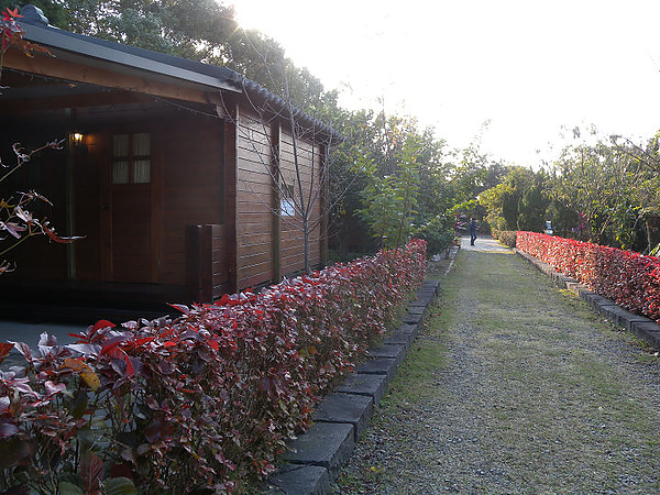 2011新竹雲雀跨年 042.JPG