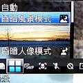 P1020061.jpg