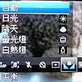 P1020071.jpg